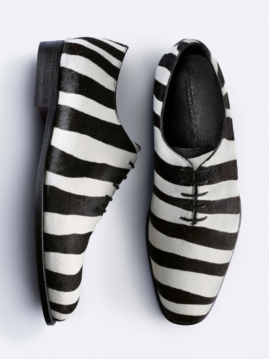 A men's lace up shoe in zebra print on a plain white background.